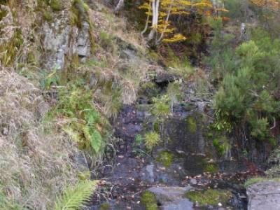 Excursiones y Senderismo, Parque Natural del Hayedo de Tejera Negra; hacer senderismo